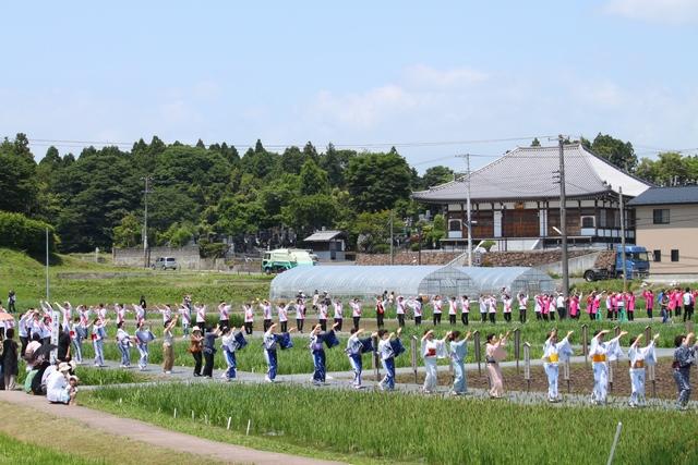 多賀城あやめ園2010・多賀城あやめ音頭と多賀城踊り・画像
