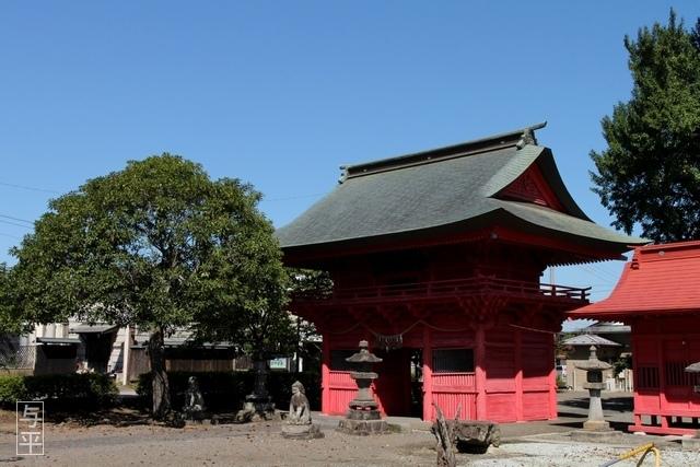 04 96 吉岡八幡神社、ヒガンバナ(ヒガンバナ・曼殊沙華)、宮城県大和町、画像.jpg