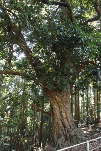 14 96 鹿島天足別神社(大亀明神)、亀石、宮城県大郷町、大亀山森林公園、画像.jpg