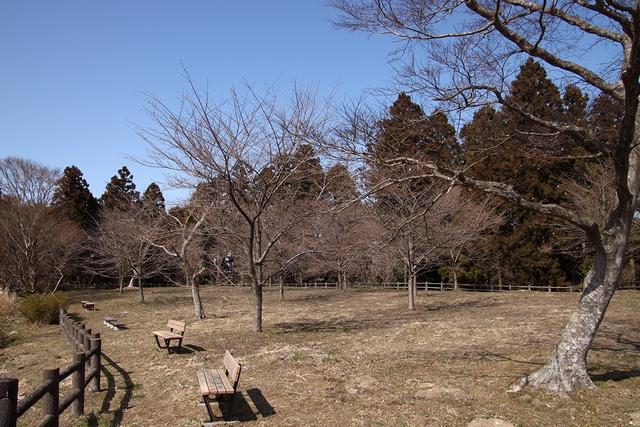 鶴ヶ城(松森城)・宮城県仙台市泉区松森・画像01