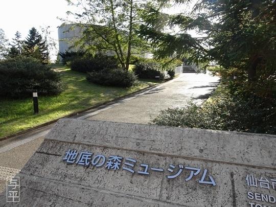01 94 地底の森ミュージアム、富沢遺跡、宮城県仙台市、画像.jpg