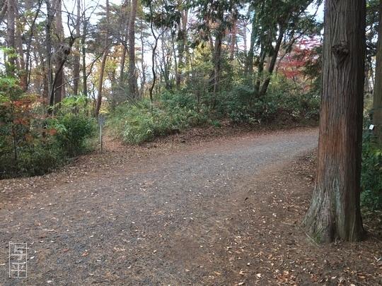 02 94  湧き水、台原森林公園、宮城県仙台市、画像.jpg