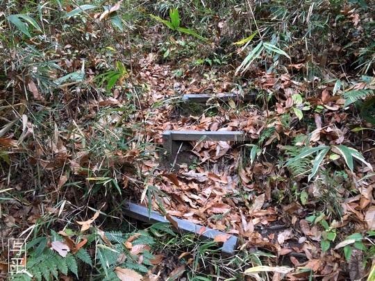 03 94 湧き水、台原森林公園、宮城県仙台市、画像.jpg