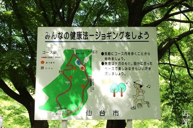 05 96 台原森林公園、宮城県仙台市.jpg