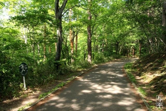07 96 台原森林公園、宮城県仙台市.jpg