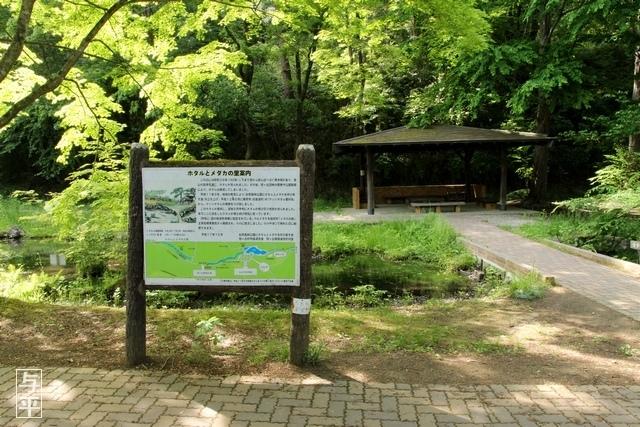08 96 台原森林公園、宮城県仙台市.jpg
