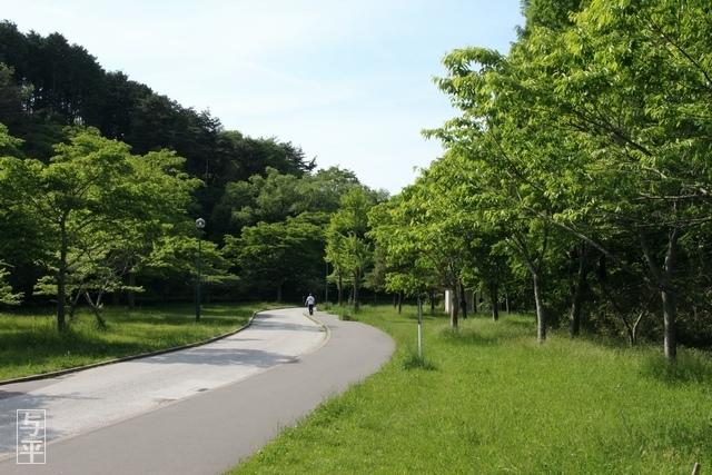 11 96 台原森林公園、宮城県仙台市.jpg