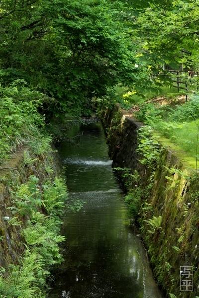 21 96 台原森林公園、宮城県仙台市.jpg