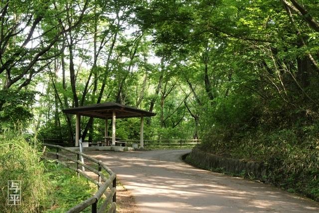25 96 台原森林公園、宮城県仙台市.jpg